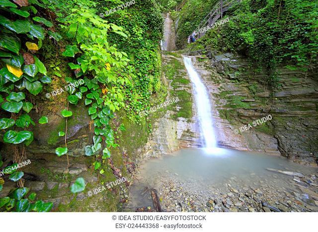 Waterfall mountais forest river water nature green