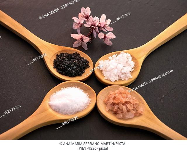 Wooden spoons with himalayan salt, black hawaii salt, common salt and salt flakes on a slate plate