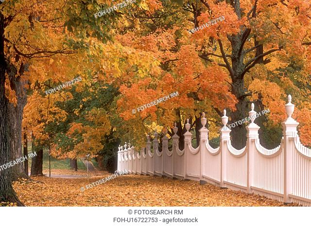 white fence, autumn, fall foliage, Vermont, White fence at the along a cluster of beautiful colorful maple trees in the fall in Old Bennington Village in...