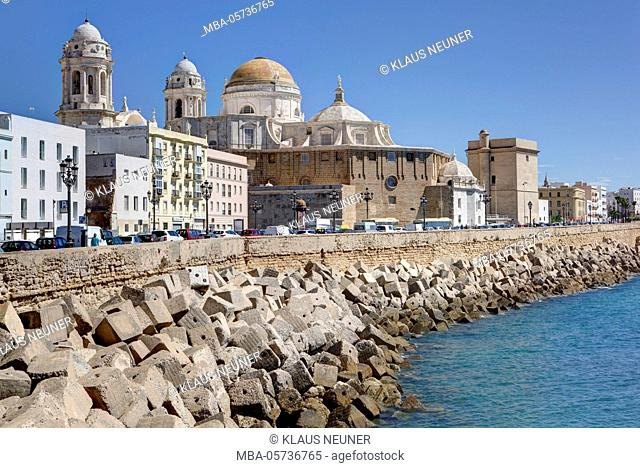 Avenida Campo del Sur, view on towers of the cathedral, Cadiz, Andalusia, Spain, Europe