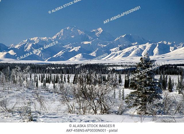 Mt McKinley & AK Range near Cantwell AK IN Winter