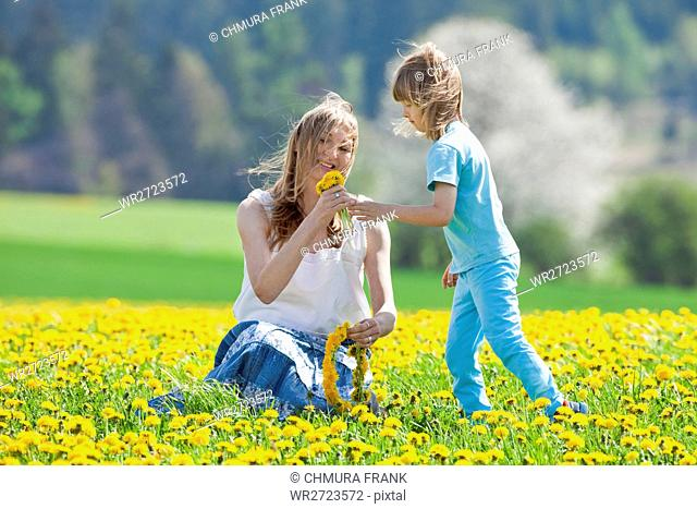 blond, boy, Caucasian, child, colour, dandelion, family, field, flower, fun, grass, meadow, mother, nature, picking, rural, smile, smiling, spring, son