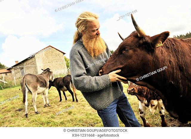 Philippe Demoisson, farmer and gatherer of aromatic and medicinal herbs in the village of Saint-Bonnet-le-Bourg, with a Ferrandaise cattle
