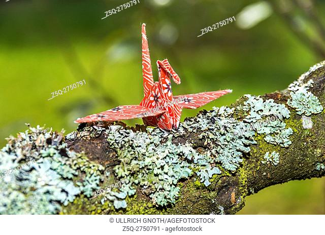 Origami paper crane made of original Japanese origami paper in a natural environment setting