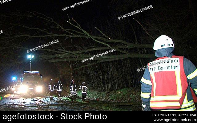 17 February 2020, Lower Saxony, Barnstorf: The fire brigade of Barnstorf clears the remains of a fallen tree from the road