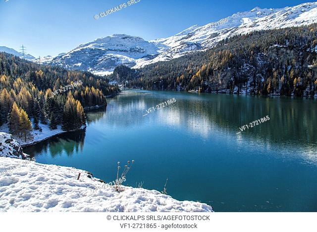 Colored snowy woods reflected in the clear waters of Lej da Marmorera Val Sursette Canton of Graubünden Switzerland Europe