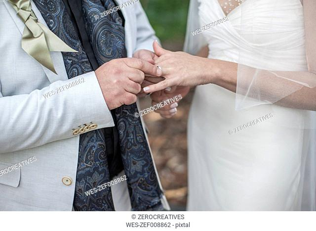 Hands of bride and groom with wedding ring