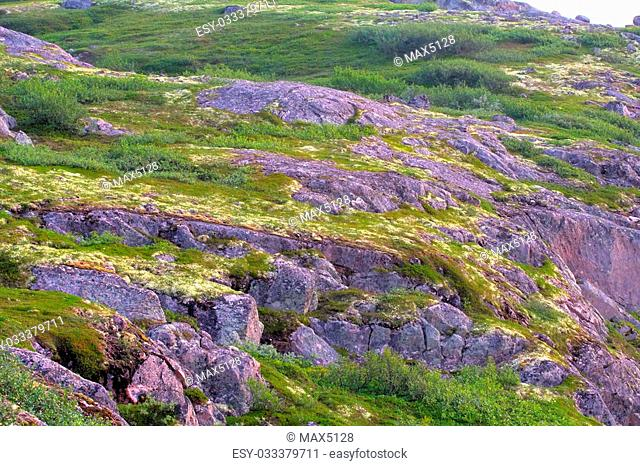 mountain tundra near sea coast wonderful polar landscape