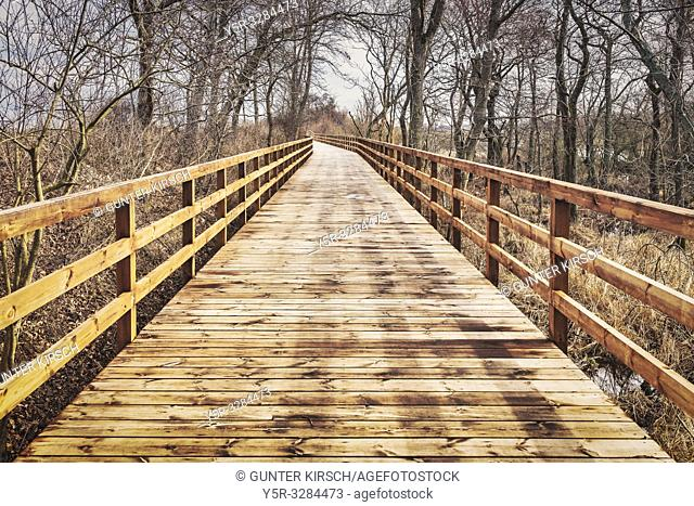 The wooden Bridge is part oft the Bicycle path between Kolobrzeg (Kolberg) and Ustronie Morskie (Henkenhagen). The bike path is part of the Baltic Cycle Route R...