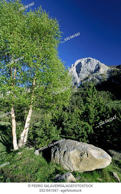 Tuqueta Blanca de Vallibierna (2790 m.). Vallibierna Valley. Benasque. Huesca province, Aragón. Spain