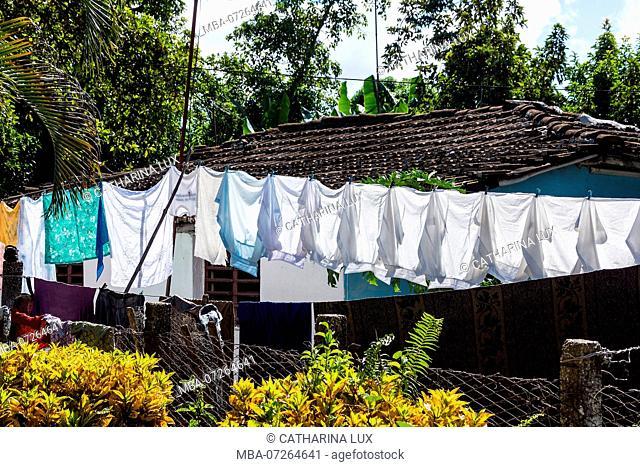 Cuba, Valle de los Ingenios, Manaca Iznaga, clothesline with laundry