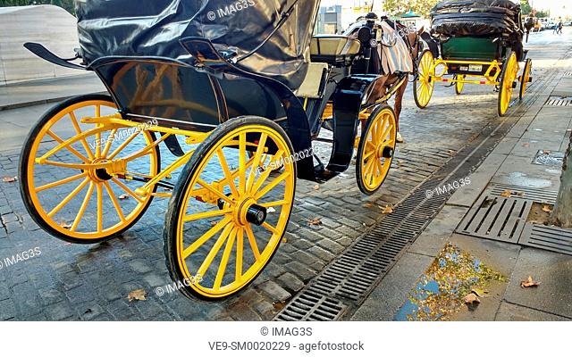 Horse Carriage, Seville, Andalusia, Spain