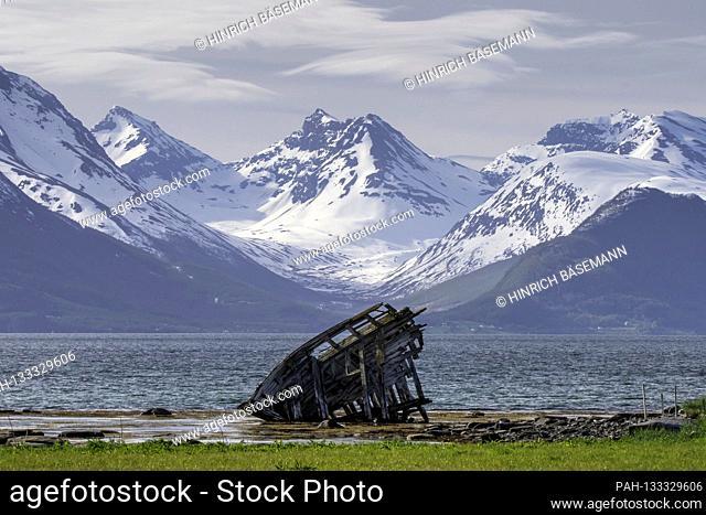 late spring in northern Norway, june 2020 | usage worldwide. - Kvalöya/Troms/Norway
