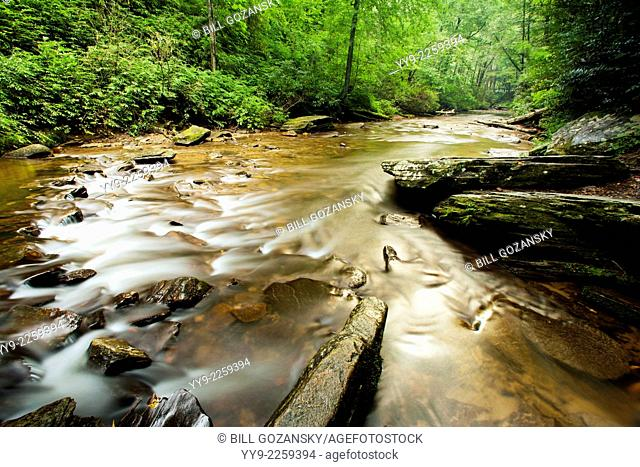 Stream by Looking Glass Falls - Pisgah National Forest - near Brevard, North Carolina USA