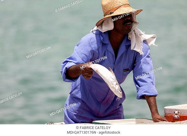 Qatar - Doha - Fish market on the corniche - Fishermen selling fresh fishes to Qatari