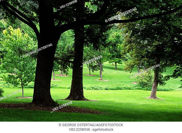 Lawn, Finch Arboretum, Spokane, Washington