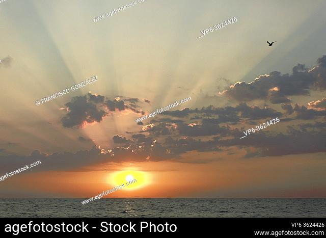 Sunrise at Cabo Cervera in Torrevieja, Alicante province in Spain. Horizontal shot with space for text