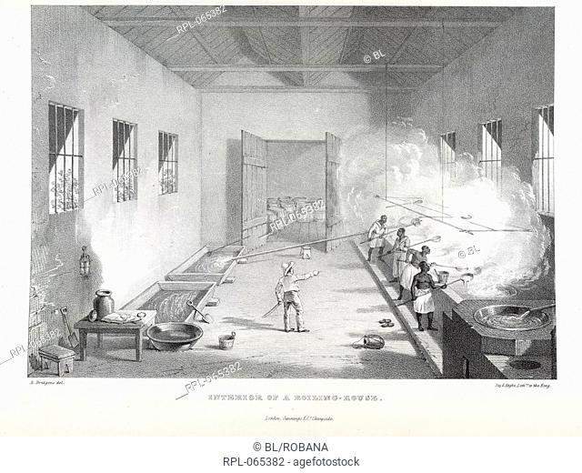Interior of a Boiling-House, 'The juice of the cane is conveyed in pipes from the mill to the boiling house, where it is converted into sugar