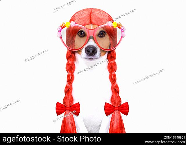 hairdresser dog ready to look beautiful by comb, scissors, dryer, and spray at the wellness spa salon, isolated on white background wearing funny nerd glasses