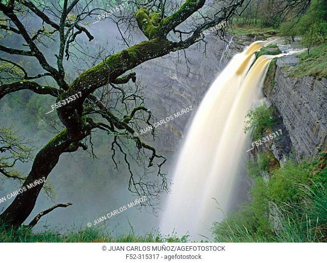 Gujuli waterfall. Álava, Euskadi, Spain