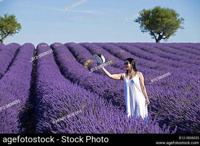 Woman in lavender fields with hat, southern France