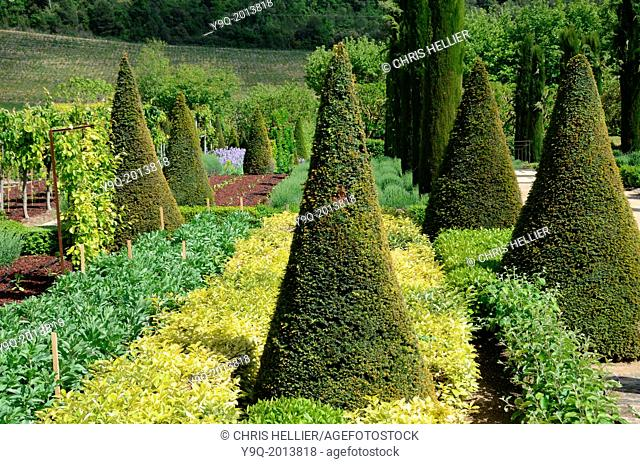 Topiary Gardens Château Val Joannis Pertuis Luberon Provence France