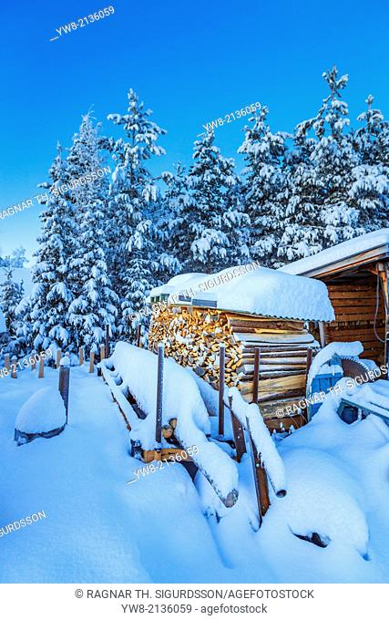 Wood and snow covered trees in extreme cold temperatures, Lapland, Sweden