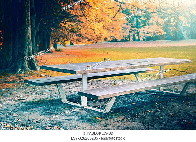 Lonely picnic place in autumn park. Nature background