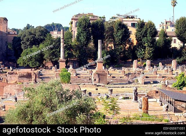 Ancient Roman Forum, UNESCO World Heritage Site, Rome, Lazio, Italy