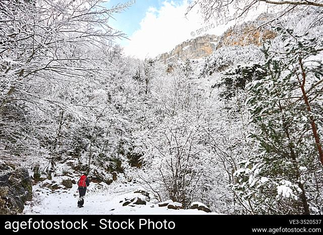 Pyrenees: a woman hiking along snowy path in the National park of Ordesa and Monte Perdido (Huesca province, Aragon region, Spain)