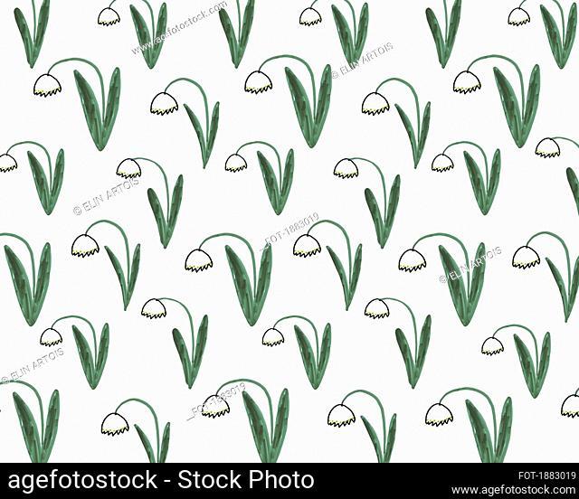 Illustration of daffodils on white background