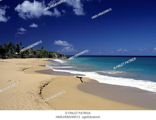 France, Guadeloupe French West Indies, Basse Terre, Deshaies, Plage de Rifflet