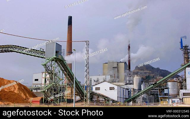 Factory with smoking chimneys. Navarre, Spain, Europe