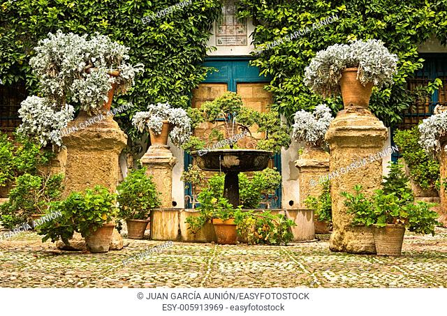 Garden Courtyard of a typical house in Cordoba, Spain