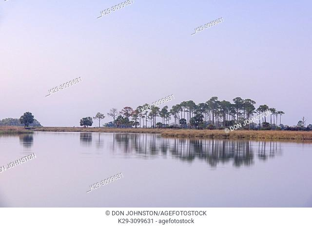 Picnic pond at dawn, St. Marks NWR, Florida, USA