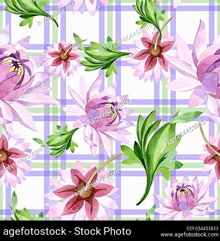 Pink water lily. Floral botanical flower. Wild spring leaf wildflower pattern. Aquarelle wildflower for background, texture, wrapper pattern, frame or border