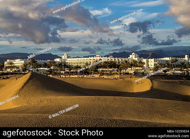 Spain, Canary Islands, Gran Canaria Island, Maspalomas, Maspalomas Dunes National Park