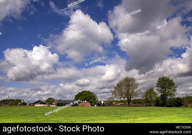 Landscape with farm buildings under large white clouds near the Dutch village Bornerbroeknear Bornerbroek