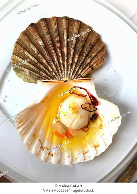 Grilled scallop with garlic, and olive oil. Galicia, Spain