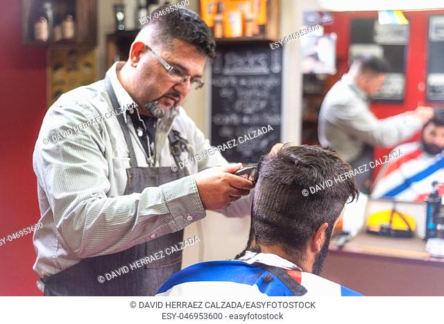 Handsome bearded man getting haircut by hairdresser at the barber shop