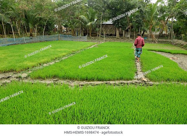 Bangladesh, the Mosque City of Bagerhat listed as World Heritage by UNESCO, is a formerly lost city, originally known as Khalifatabad