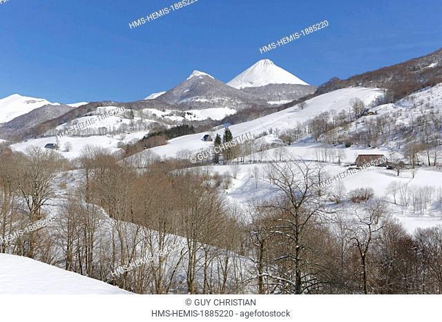 France, Cantal, Parc Naturel Regional des Volcans d'Auvergne (Natural regional park of Volcans d'Auvergne), Monts du Cantal, Mandailles Valley the Puy Griou