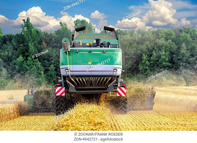 Rear view of a combine during grain harvest