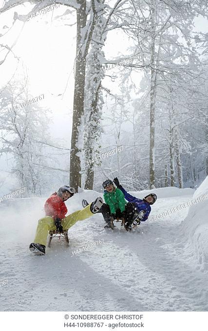 group on toboggan in winter in Switzerland