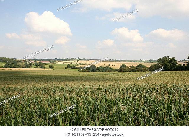 tourism, France, upper normandy, seine maritime, pays de bray, land, landscape of the surroundings of gournay, fields, panorama, agriculture Photo Gilles Targat