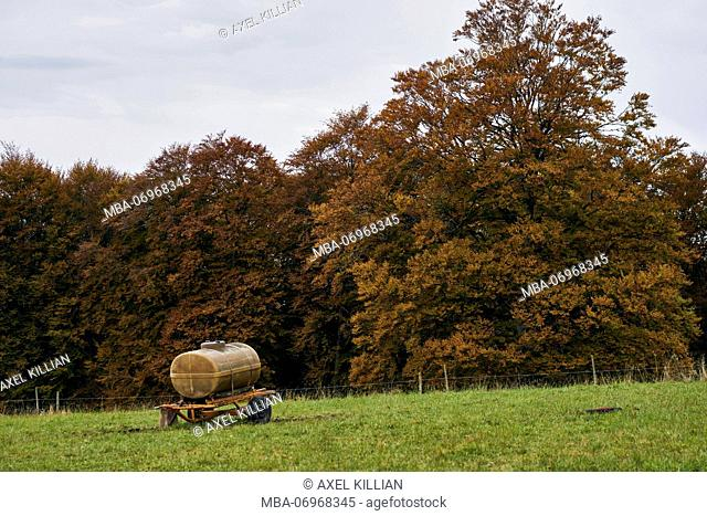 manure vehicle on a green meadow at the edge of the forest, beeches in autumn