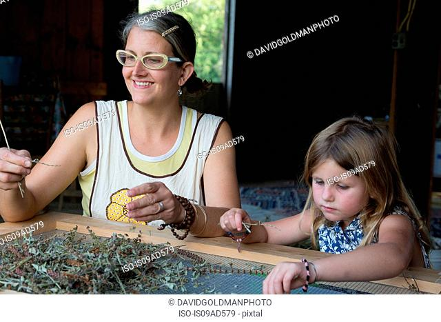Mother and daughter sorting dried herbs