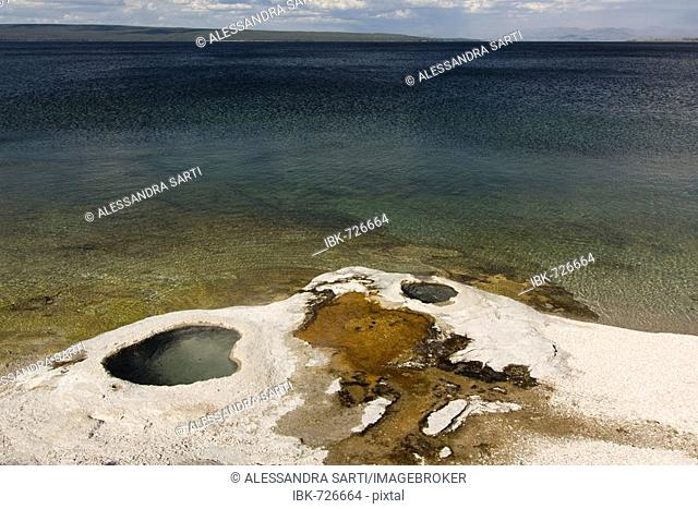 Lakeshore Geyser, Yellowstone Lake, West Thumb Geyser Basin, Yellowstone National Park, Wyoming, USA