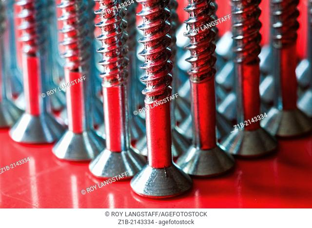 Abstract image of wood screws on a red surface