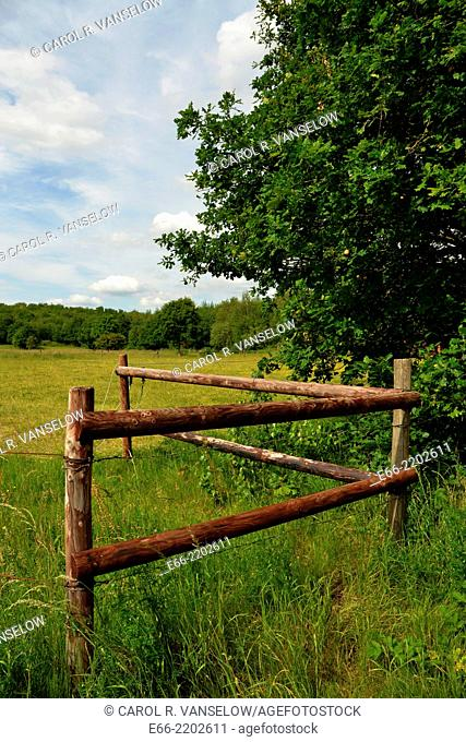 corner of wooden fence in field in Limburg province of the Netherlands
